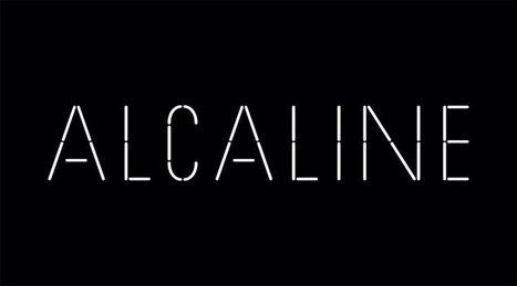 Elliott Murphy et Sting parlent de Bruce Springsteen dans «Alcaline» sur France 2 - le Blog Bruce Springsteen | Bruce Springsteen | Scoop.it