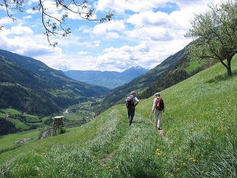 Les bienfaits de la marche à pied en forêt | Le Cap Coaching | Scoop.it