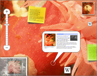 Speaking Image - Collaborative annotation of interactive images | Moodle and Web 2.0 | Scoop.it