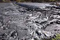 Recycling and reusing coal ash in the construction industry   Climate - Water - Ecology - People and Sustainability post Rio+20   Scoop.it