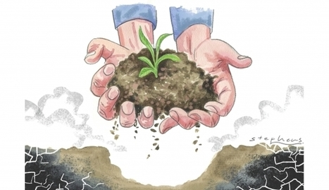 No quick fix for China's polluted soil | Sustain Our Earth | Scoop.it