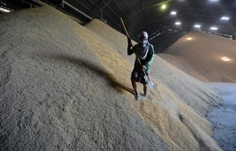 Feeding the multitudes: food security in Asia | East Asia Forum | Local Food Systems | Scoop.it