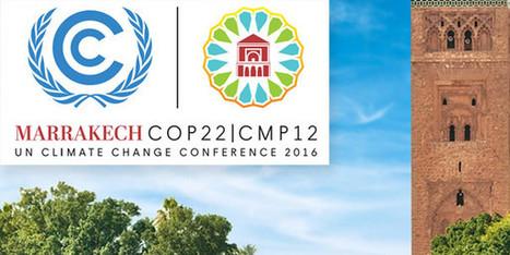 """Lancement de """" 2050 Pathways """", une plateforme pour un développement sobre en carbone   Eco Innovation   Scoop.it"""
