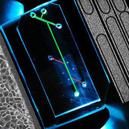 Materiales usados en ingeniería biomédica - Alianza Superior   Materiales usados en ingeniería biomédica   Scoop.it