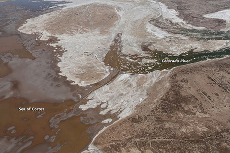 Colorado River Reaches the Sea of Cortez | Geography Education | Scoop.it