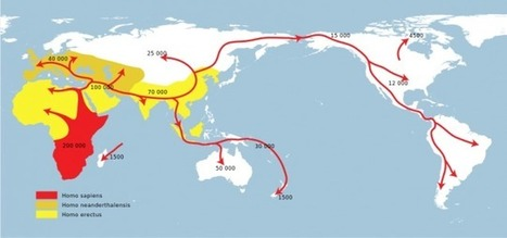 The 2 million year melee—neanderthals vs. humans   Aux origines   Scoop.it