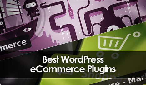 Improve Your Online Business with Excellent E-Commerce Plugins for WordPress | Digital-News on Scoop.it today | Scoop.it
