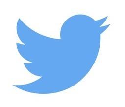 Twitter ajoute la diffusion de vidéos en direct à son fil d'actualité | Tendances numériques et outils du web | Scoop.it