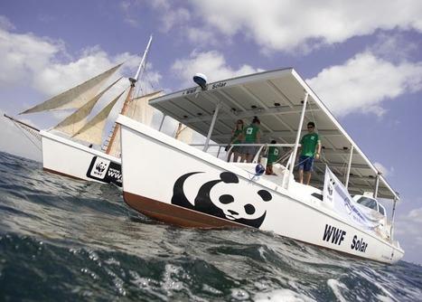 WWF Spain - RENOWATIO: Muévete con el sol   MDV 2014   Scoop.it