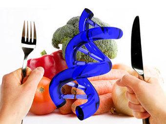 ¿Qué son los alimentos transgénicos?   Nutrición   Stop Monsanto   Scoop.it