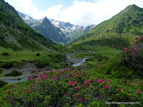 Sortie au Moudang - Montagne Pyrénées   Vallée d'Aure - Pyrénées   Scoop.it