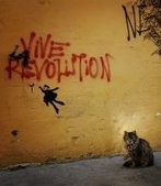 Processus révolutionnaires : Eléments d'analyses - Centre Tricontinental - CETRI | Philo & DD | Scoop.it
