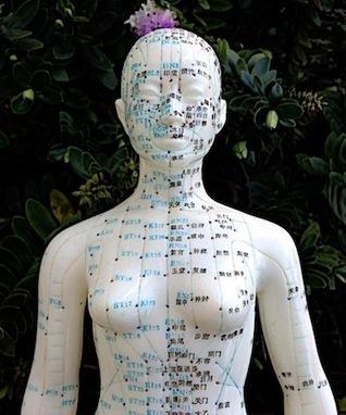 Acupuncture Regulates Sex Hormones in PCOS | Fertility acupuncture | Scoop.it