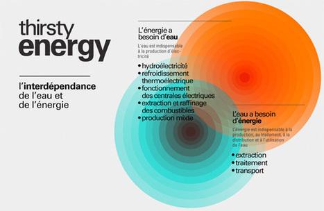 Quand l'énergie a soif : vers une gestion conjointe des ressources ? | Les éco-activités dans le monde | Scoop.it