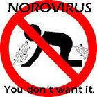 3000 sick; norovirus in Chilean water supply - Barfblog (blog) | Norovirus | Scoop.it