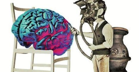 El cerebro, supongo | Science | Scoop.it