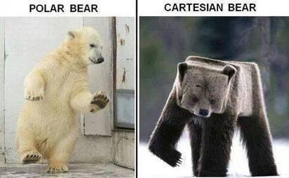Oso polar vs Oso Cartesiano | Humor racional | Scoop.it