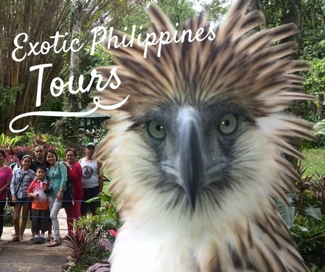 Introducing a New Feature of Exotic Philippines Blog - Exotic Philippines   Exotic Philippines   Scoop.it