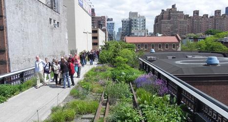 Favoriser l'essor de la biodiversité : agir du sol au plafond des villes | Biodiversité | Scoop.it