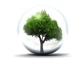 Ue, varato il piano d'azione per l'ecoinnovazione | Sostenibilità ambientale | Scoop.it