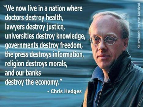 Chris Hedges' snapshot of America....... | Human Rights and the Will to be free | Scoop.it