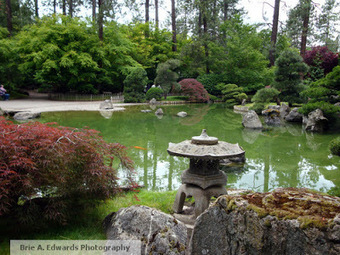 If You're Into It.: Japanese Gardens and Project Planning!   A Love of Japanese Gardens   Scoop.it
