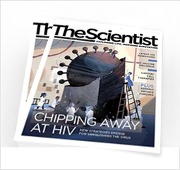 Genomes Point the Way | Virology News | Scoop.it