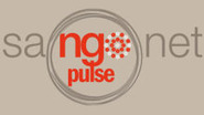Technology, e-Learning and Education in Africa | NGO Pulse | Peter Day's Scoops | Scoop.it