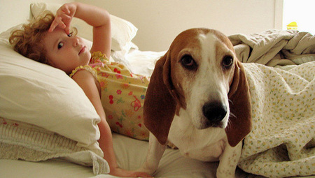 Norovirus can be transmitted by dogs | MNN - Mother Nature Network | Norovirus | Scoop.it