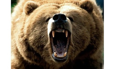"""Peter Grandich: """"[It's] Time To Put The Growling Bear Suit Back On Again"""" 