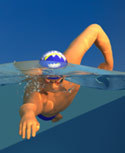 Mr Smooth - An ideal freestyle stroke animation   swimming for life   Scoop.it