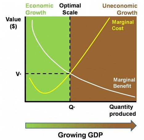 Downsides of Growth | P2P search for New Politics & Economics | Scoop.it