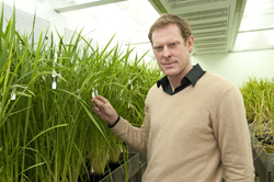 """Why we need plant scientists 