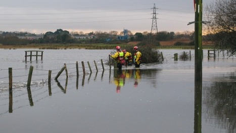RSPCA officers cut through fences to rescue horses from flooded fields   Pets   Scoop.it