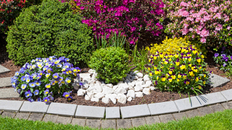 Green Landscaping In Boston - CBS Local | Landscaping & Gardening | Scoop.it