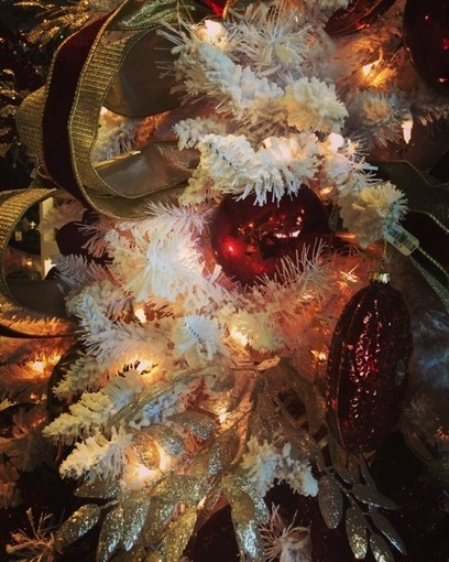 My Word with Douglas E. Welch » Oh, Christmas Tree No.1 [Photo] | Douglasewelch | Scoop.it
