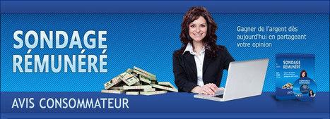 Comment gagner de l'argent avec les sondages rémunérés   Un salaire de 4000 Euros par mois en répondant a des sondages rémunérés en ligne   Scoop.it