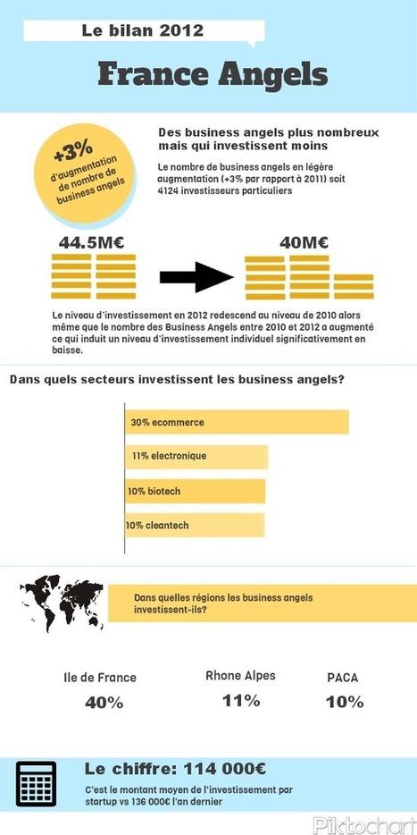 [Infographie] Le bilan des investissements 2012 de France Angels - Maddyness | Financer l'innovation | Scoop.it