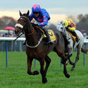 Cue Card will miss the Cheltenham Festival due to injury | Sports News | Scoop.it