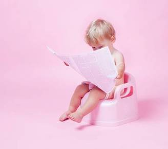 Why you shouldn't read the paper on the loo ... - Independent.ie   Institute of Food Research News   Scoop.it