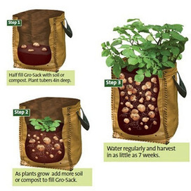 Homestead Survivalist: Growing Potatoes In Containers | ApocalypseSurvival | Scoop.it