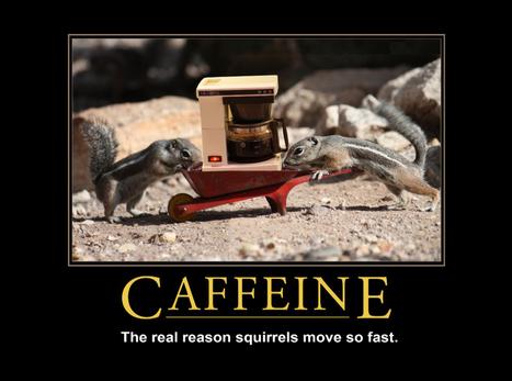 Caffeine | LOLfreak | Scoop.it