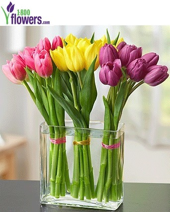 1800flowers coupon 30% off | Smart Fashions and deals | Scoop.it