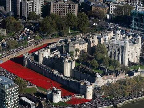 Over 888,000 ceramic poppies planted at the Tower of London to commemorate lives lost in WW1 | News from around the Globe | Scoop.it