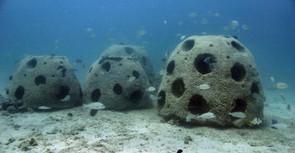 Sauver les récifs marins avec l'impression 3D : le projet du Reef Arabia - imprimeren3D.net | Clic France | Scoop.it