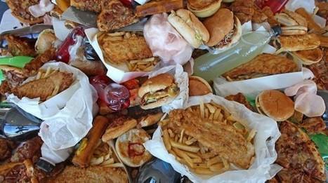 Perché ci piace il junk food - Wired | Mente e Cervello | Scoop.it