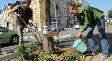 Une « guérilla potagère » dans les rues de Lille | 100 Acre Wood | Scoop.it