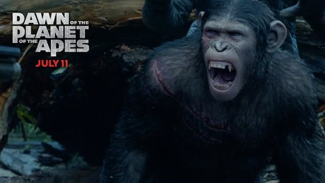 Dawn of the Planet of Apes 2014 Full Movie 720p HD 800MB | Lifestyle | Scoop.it