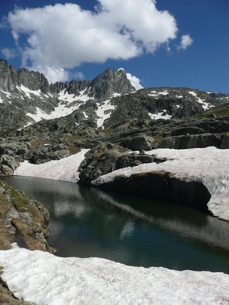 Les abords du lac det Mail dans le massif du Néouvielle le 15 juillet 2014 | Simone Fréchou | Vallée d'Aure - Pyrénées | Scoop.it