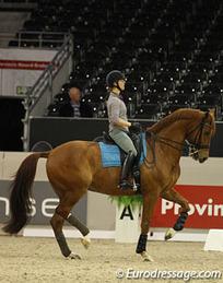 Dutch Coach Janssen and World Cup Dressage Champion Cornelissen Go Their Separate Ways | eurodressage | Fran Jurga: Equestrian Sport News | Scoop.it
